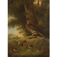 a family of grouse in a landscape by howard l. hill