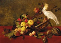 still life with fruit and cockatoo by james charles ward