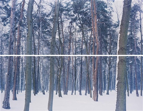 winter 2 from liquidation diptych by ori gersht