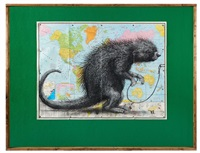 south american porcupine by roa