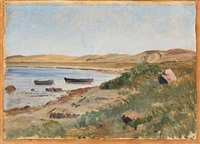 view from kalø vig, denmark by janus andreas barthotin la cour