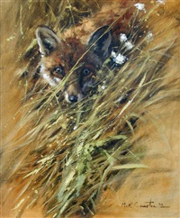 fox in the grass by mick cawston