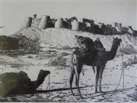 chameaux au repos by patrice serres