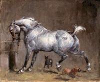 cheval blanc à l'écurie by emmanuel de santa coloma