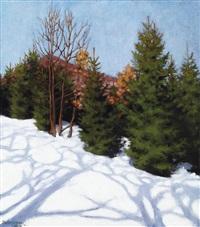 winter sunshine by samu börtsök