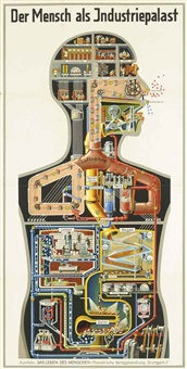 der mensch als industriepalast (man as industrial palace) by fritz kahn