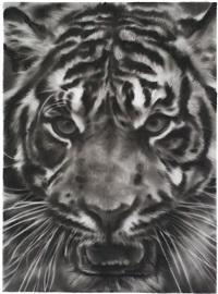 study of tiger head 4b by robert longo