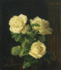 white roses by niels peter rasmussen
