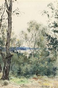 utsikt mot bogesunds slott från hasseludden, nacka by albert theodor gellerstedt