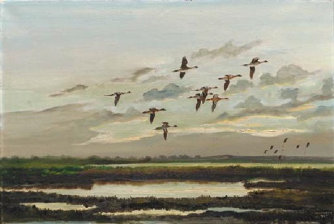 pintail lough gara co sligo by hugh monahan