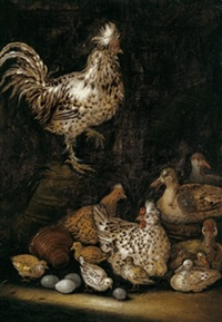 hühner und enten mit ihren küken in einem geflügelhof by petrus schotanus