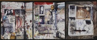 selected diary pages by peter beard