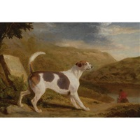 colonel thornton's hound lucifer in a scottish landscape by george garrard