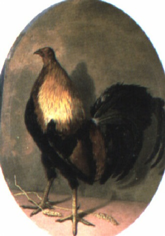 a cockeral by eliot thomas yorke