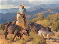 mountain pastures by bill anton