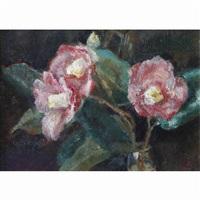 camellia by aimitsu