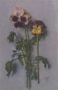 pansies by allan gwynne-jones