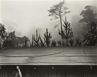 7 a.m. pacific war time by edward weston