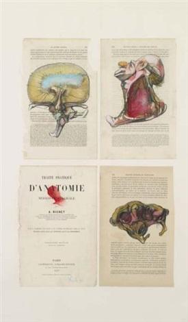 traite danatomie by miodrag djuric dado