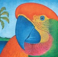 papagalia by cláudio tozzi