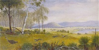chasing an emu - plains near ararat, victoria by edward roper