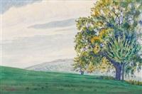 grüne wiesenlandschaft mit bäumen by albert trachsel