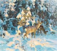 rådjur i snötyngd skog by thure wallner