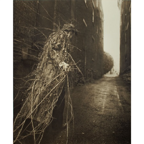 earthcoat by robert shana parkeharrison