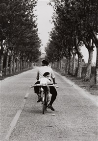 provence, france by elliott erwitt