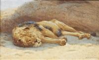 sleeping lion by john charles dollman