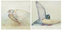 a.鴿子a b.鴿子b (a.pigeon a b.pigeon b)(2 works) by huang mingzhe