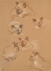 six études de chats siamois by maurice denis