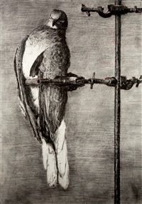 bird catcher by william kentridge