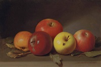 still life with apples and fly by peter baumgras
