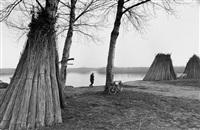 landschaft bei grazie am minicio bei mantua, 1978 by christian baur