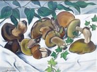 les champignons by andré fougeron