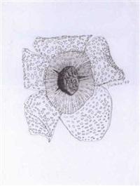 untitled (flower) by yutaka sone