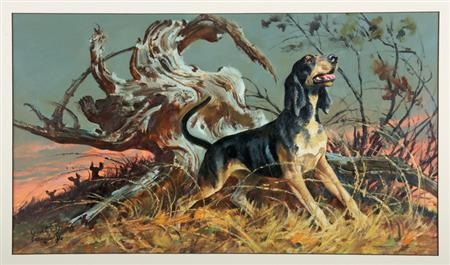 Old Drum Black And Tan Coonhound By Walter Martin Baumhofer On Artnet