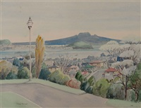 auckland from the domain by peggy spicer
