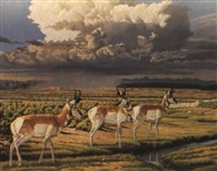 the watering place - antelope by don rodell