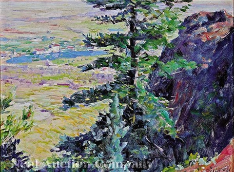 mountain view of the broadmoor hotel colorado springs by robert reid