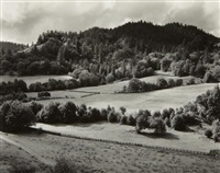 eel river ranch by edward weston