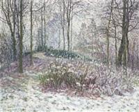 vue de parc sous la neige by léon de smet