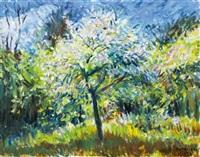 springtime blooming by istván boldizsár