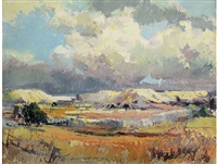 landscape with mine dumps by ruth squibb