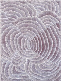 untitled by kngwarreye lily sandover