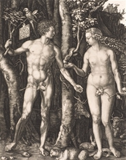 adan y eva by albrecht dürer