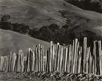 fence, old road, big sur by edward weston