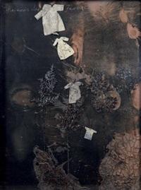 geheimnis der farne (le mystère des fougères) by anselm kiefer