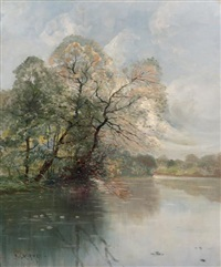 arbre sur la rivière by paul morizet